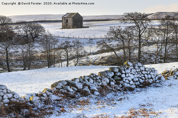 North Pennine Winter Wonderland, Teesdale, County  Canvas print by David Forster