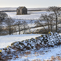 Buy canvas prints of North Pennine Winter Wonderland, Teesdale, County  by David Forster