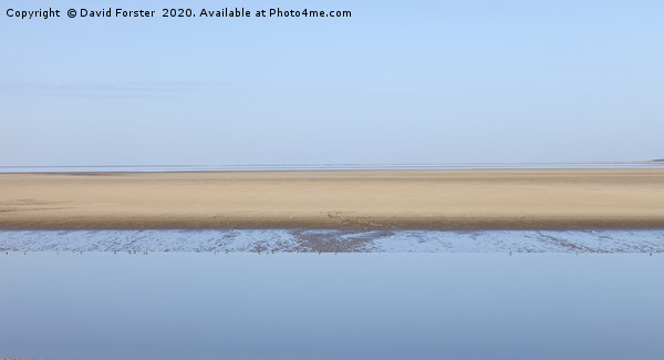 Morecambe Bay Nature Reserve, Lancashire UK Canvas print by David Forster