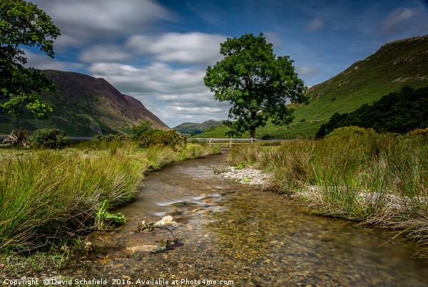 Crummock Water, Lake District Canvas Print by David Schofield