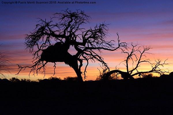 Namibian sunset Canvas Print by Paolo Monti Guarnieri