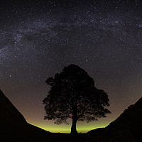 Buy canvas prints of Sycamore Gap by Alan Wallace