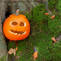 Buy canvas prints of Scary halloween pumpkin in the woods by Simon Bratt LRPS