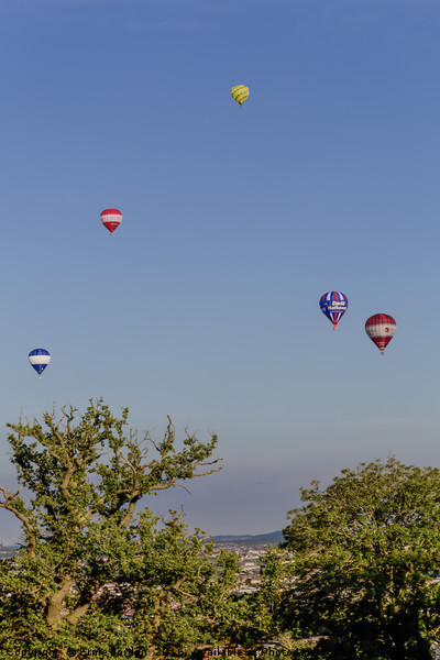 Balloons at Bristol Balloon Fiesta. Canvas Print by Ernie Jordan
