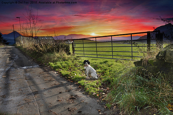 sunset walk Canvas print by Del Fox