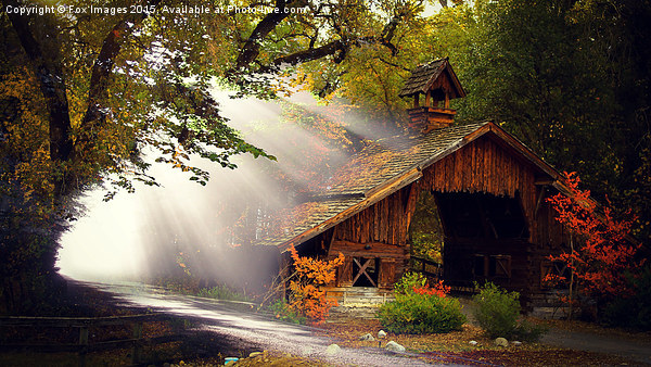 Cabin in the woods Canvas Print by Fox Images