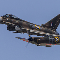 Buy canvas prints of  Spitfire & Typhoon Formation by Kevin Tappenden