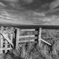 Buy canvas prints of Peak District moors near the Cat and Fiddle by Chris Warham