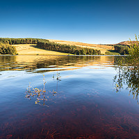 Buy canvas prints of Errwood Reservoir - Goyt Valley, Derbyshire by Chris Warham
