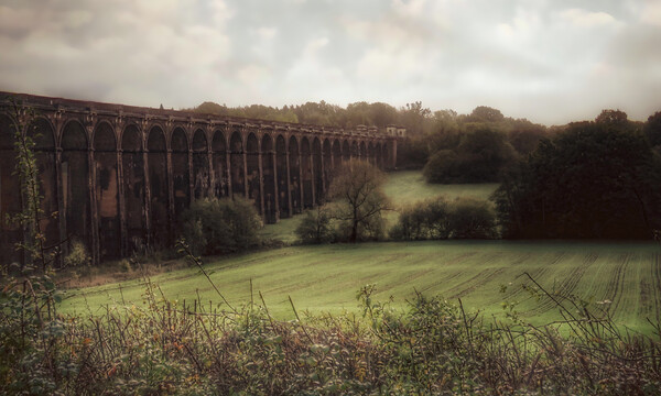 Ouse Valley Viaduct  Framed Print by Beryl Curran