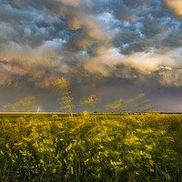 Buy canvas prints of Lightning and motion by John Finney