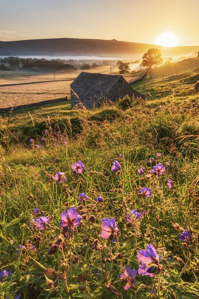 Hope Valley Summer Sunrise 2020. Peak District  Canvas Print by John Finney