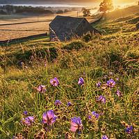 Buy canvas prints of Hope Valley Summer Sunrise 2020. Peak District  by John Finney