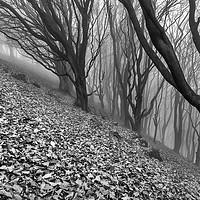 Buy canvas prints of Vertigo. Black and White. by John Finney