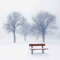 Buy canvas prints of Winter trees and bench in fog by ELENA ELISSEEVA