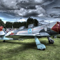 Buy canvas prints of King of the Skies by Glyn Wade