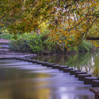 Buy canvas prints of Stepping Stones by Beata Aldridge