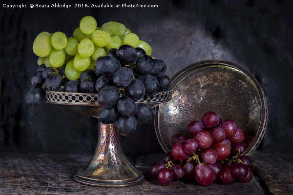 Vintage grapes Canvas print by Beata Aldridge