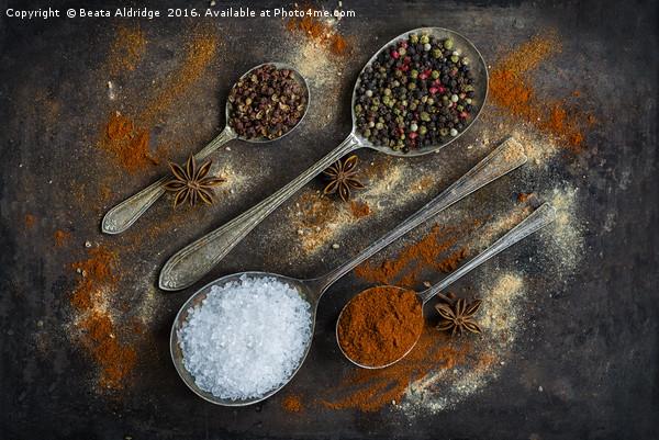 The world of spices Canvas print by Beata Aldridge