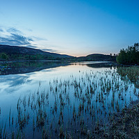 Buy canvas prints of Local Loch by Iain MacDiarmid