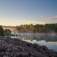 Buy canvas prints of Misty Loch Nam Bàt by Iain MacDiarmid