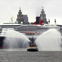 Buy canvas prints of Queen Mary 2 by David Chennell