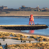 Buy canvas prints of South Shields Groyne by Ray Pritchard