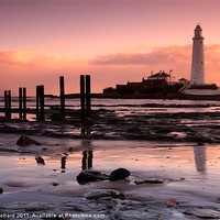 Buy canvas prints of St Marys Lighthouse by Ray Pritchard