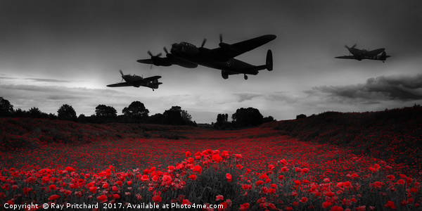 Battle of Britain Canvas Print by Ray Pritchard