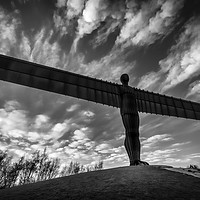 Buy canvas prints of Angel of the North  by Ray Pritchard
