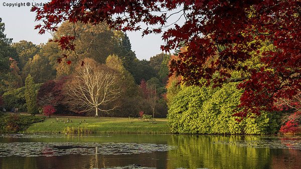 Autumn In Sheffield Park Framed Mounted Print by Linda Corcoran LRPS CPAGB