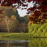 Buy canvas prints of  Autumn In Sheffield Park by Linda Corcoran LRPS CPAGB