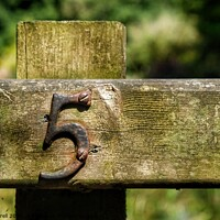 Buy canvas prints of Fence Post Number 5 by Jacqui Farrell