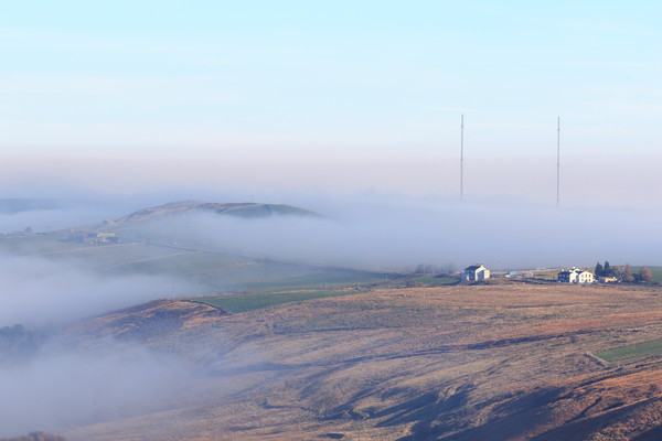 Yorkshire Fog  Canvas print by chris smith
