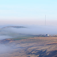 Buy canvas prints of Yorkshire Fog  by chris smith