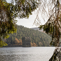 Buy canvas prints of Derwent reservoir   by chris smith