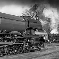 Buy canvas prints of Flying Scotsman at Mid Hants Railway  by Philip Enticknap
