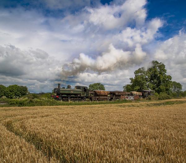 Chinnor & Princess Risborough Railway  Acrylic by Philip Enticknap