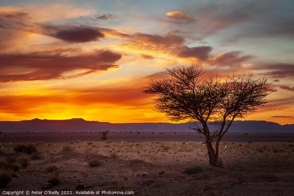Desert Sunset #2 Print by Peter O'Reilly