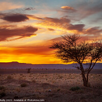 Buy canvas prints of Desert Sunset #2 by Peter O'Reilly