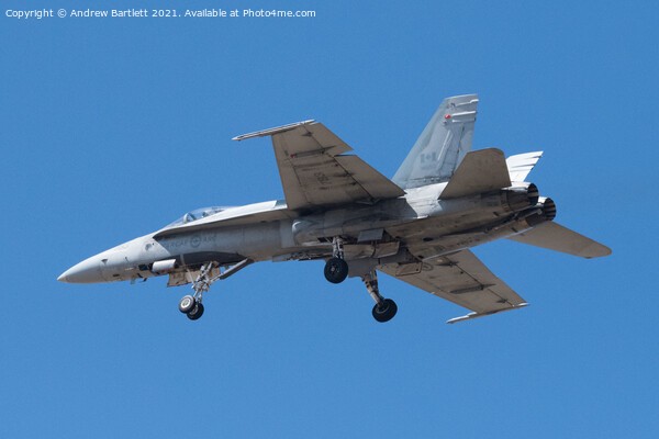 Royal Canadian Air Force, CF18 Hornet Acrylic by Andrew Bartlett