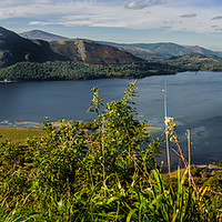 Buy canvas prints of Derwent Water Panorama  by Paul Chambers