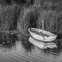 Buy canvas prints of Rowing Boat Alongside Reeds by Tony Sharp LRPS