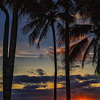 Buy canvas prints of Waikiki Sunset by Reg K Atkinson