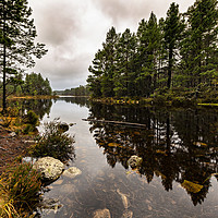 Buy canvas prints of Loch Gamhna - Cairngorms by Reg K Atkinson