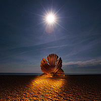 Buy canvas prints of The Scallop by Nick Rowland