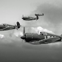Buy canvas prints of Horn Island Patrol - BW by Mark Donoghue