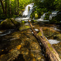 Buy canvas prints of The Forest Waterfall by Eirik Sørstrømmen