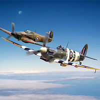 Buy canvas prints of Battle of Britain Heroes by David Stanforth