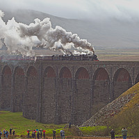 Buy canvas prints of Cumbrian Mountain Express by MICHAEL YATES